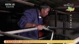 CCTV-17 农业农村